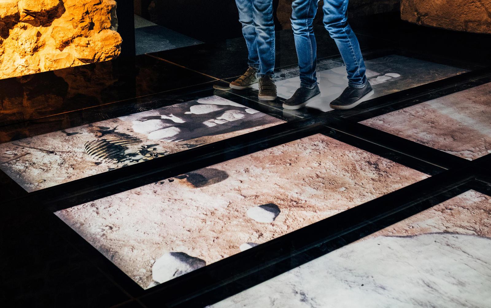 Teseum - vloerprojectie