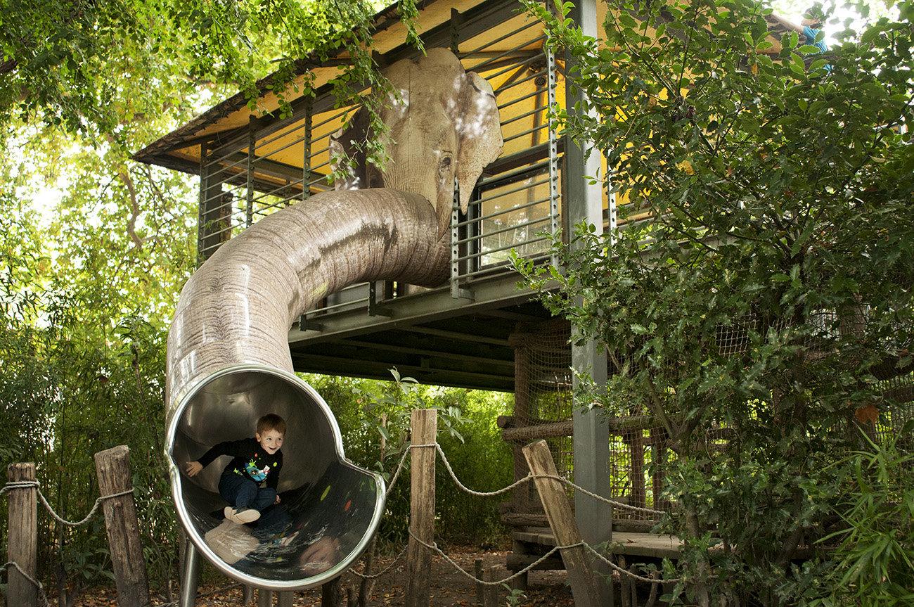 Zoo - olifantenglijbaan